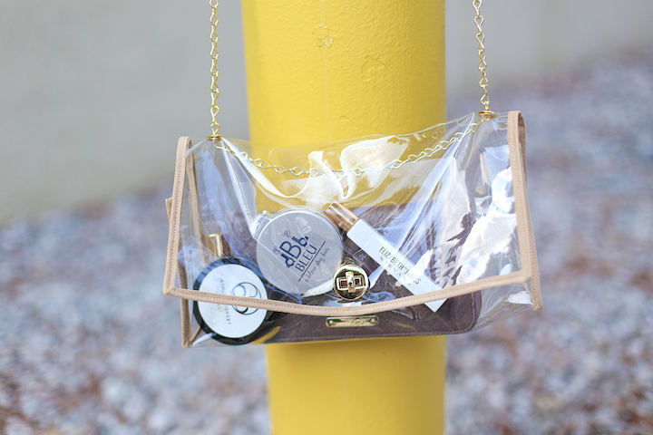 clear-purse