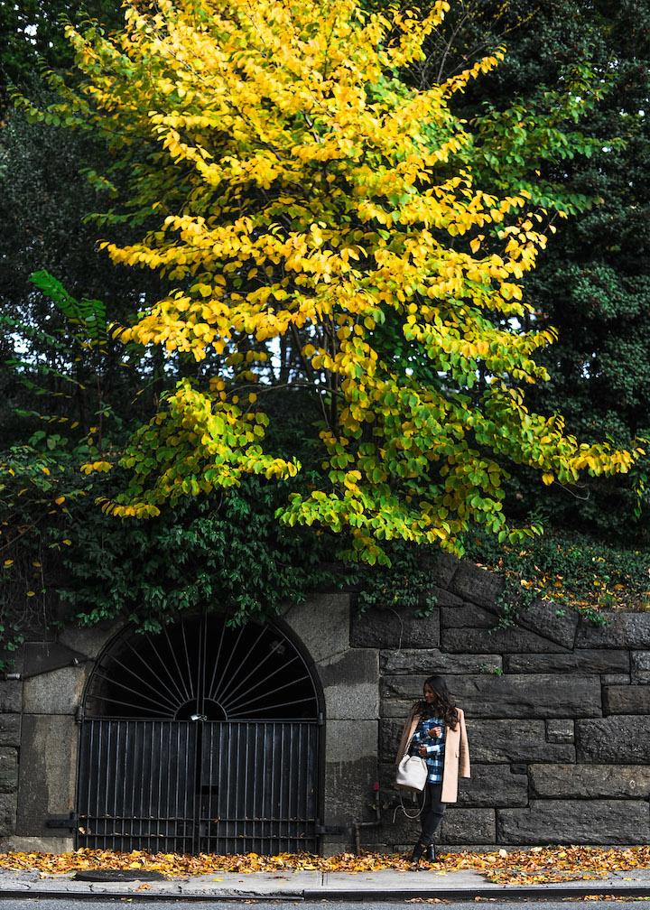 fall-in-new-york