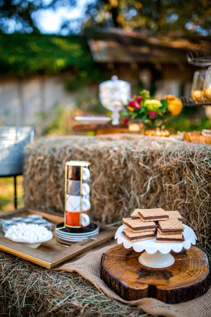 s'mores-station