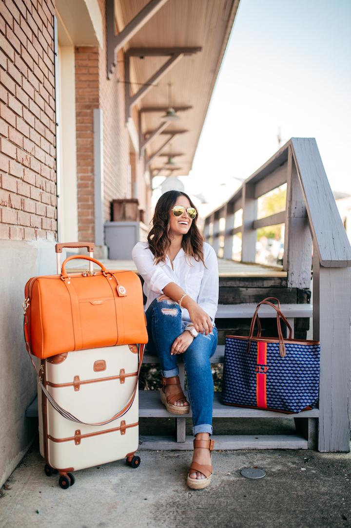 brics-luggage