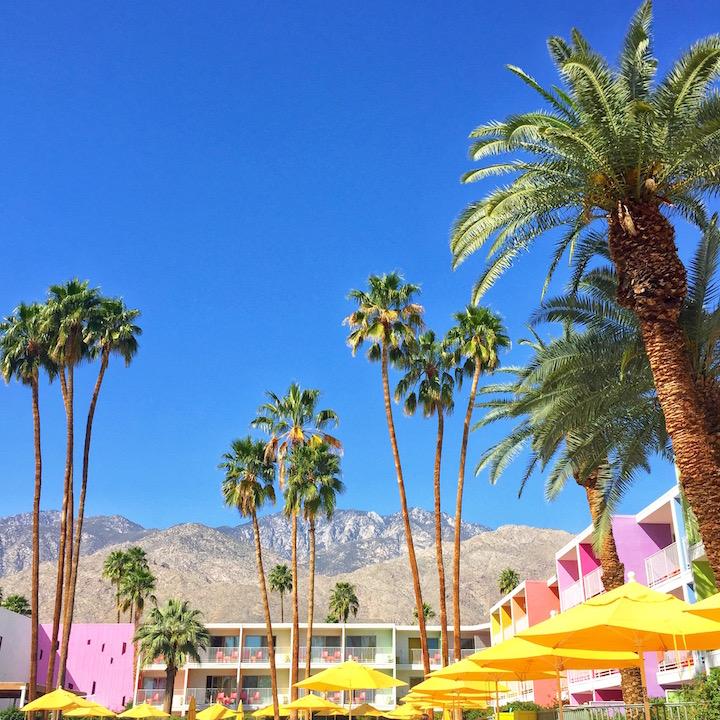 palm-springs-saguaro-hotel